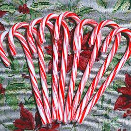Candy Cane And Poinsettia  by Christopher Shellhammer