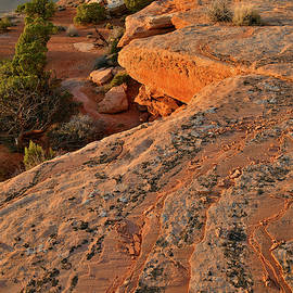 Canyonlands Orange Cliffs At Sunset by Ray Mathis