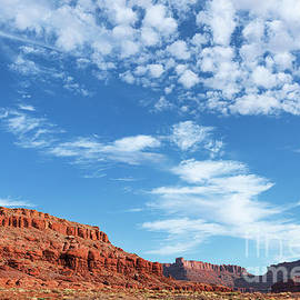 Canyonlands by Sharon Seaward