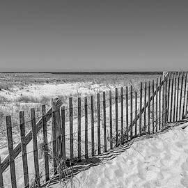 Cape Cod Beach by Dimitris Sivyllis