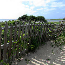 Cape Hatteras National Seashore by Matt Richardson