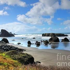 Cape Sebastian Oregon Coast by Charlene Cox
