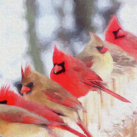 Cardinal in a Line 2809 - Painted by Ericamaxine Price