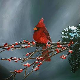 Cardinal  by Steph Moraca