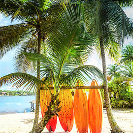 Caribbean Island Mood by Debra and Dave Vanderlaan