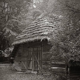 Carpathians Remote. Lviv, 2011. by Andriy Maykovskyi