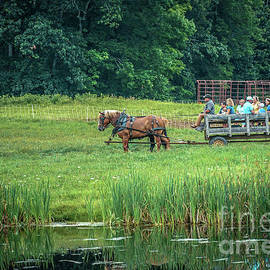 Carriage fun ride by Claudia M Photography