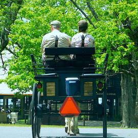 Carriage Ride - Skyline Drive by Arlane Crump