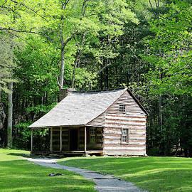 Carter Shields Cabin by Nicholas Blackwell