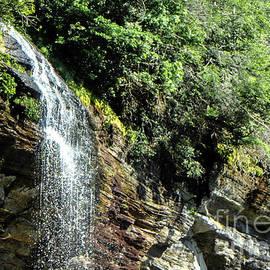Cascade If Water by Judy Hall-Folde