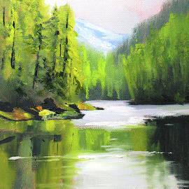 Cascade River by Nancy Merkle