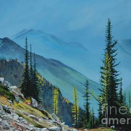 Cascades by Michael Nowak