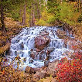 Cascading Falls in the Sierra by Lynn Bauer