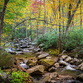 Cascading Waters in Autumn by Debra and Dave Vanderlaan