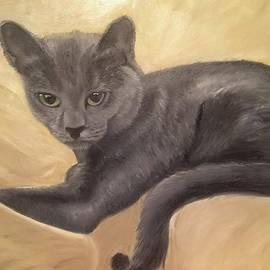 Cat by Yuliia Stelmakh