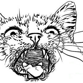 A Mewing Cat by Vladimir Evdokimov