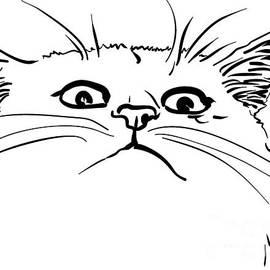 A Disagreeing Cat by Vladimir Evdokimov