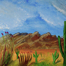Catalina Mountains and Sonoran Desert Plants by Chance Kafka