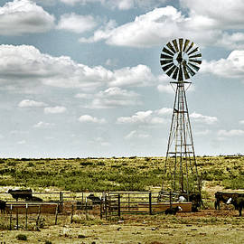 Cattle Ranch Watering Windmill by Bill Swartwout Photography