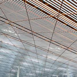 Ceiling Beijing Airport 1 by Angelina Tamez