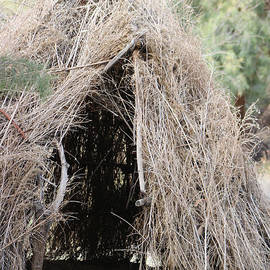 Chahuilla Indians Structure Salton Sea  by Colleen Cornelius