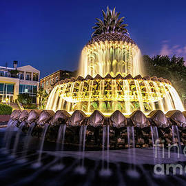 Charleston Pineapple Fountain by David Smith