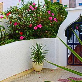 Charming Entrance by Loretta S