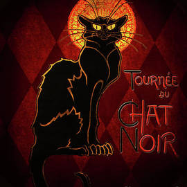Chat Noir by Shanina Conway