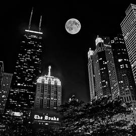Chicago on a Black Night by Frozen in Time Fine Art Photography