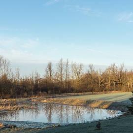 Chilly Morning at a Farm Pond by Georgia Mizuleva