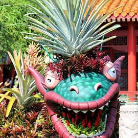 Chinese Dragon Zodiac by Diann Fisher
