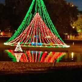 Christmas Reflections  by Gayle Miller