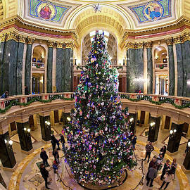 Steven Ralser - Christmas Tree -Capitol - Madison - Wisconsin 1