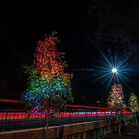 Christmas Tree Display - Placerville by Jonathan Hansen