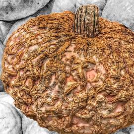 Cinderella's Gold Lace Pumpkin by Marianna Mills