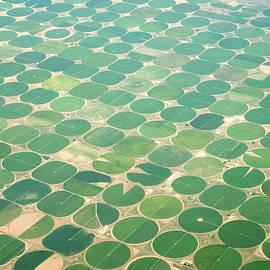 Circular Irrigation Aerial by Inkkstudios