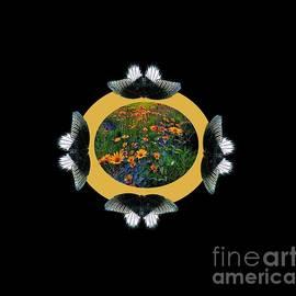 Circular Life by Belinda Threeths