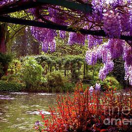 Claude Monet Water Garden by Peter Horrocks