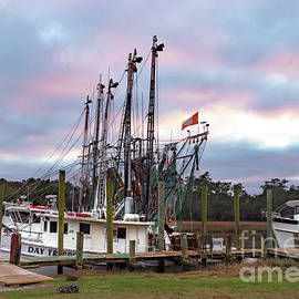 Clemson Flagged Shrimper by Norma Brandsberg
