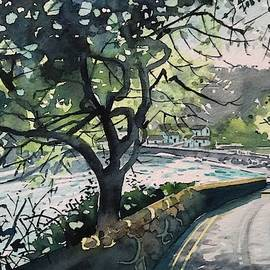Cliff Road - Salcombe  by Luisa Millicent