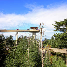 Clingman's Dome Observation Tower by Judy Vincent