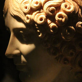 Closeup of Marble Bust of Woman at Pompeii Exhibit  by Colleen Cornelius