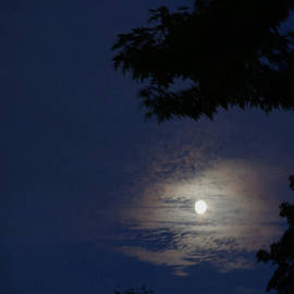 Cloud-Framed Moonrise by Ann Horn