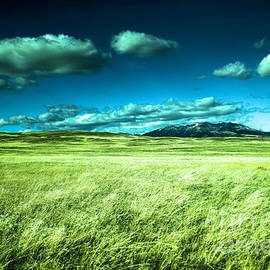 Clouds grassland in Montana by Jeff Swan