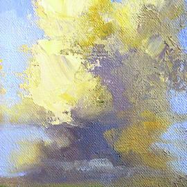 Cloudy Day by Nancy Merkle