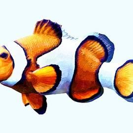 Clownfish Cutout by Susan Savad