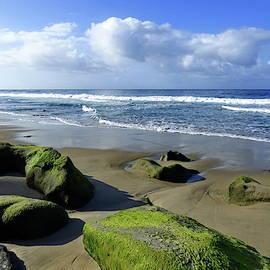 Coast of Laguna Beach, California by Lyuba Filatova