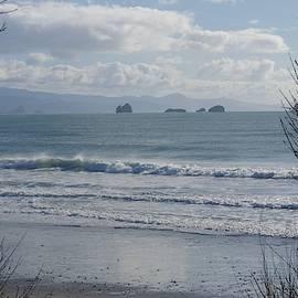 Coastal Blues by Adria Trail