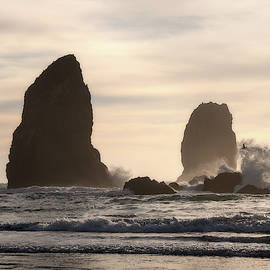 Coastal Chaos by Matthew Ashley