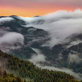 Coastal Range Color And Light by Leland D Howard